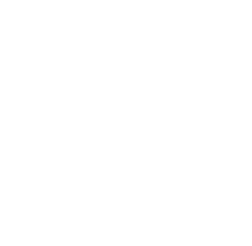 Anticonceptie icon
